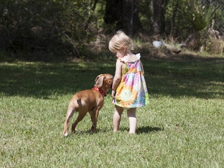 Pet dogs may help prevent childhood anxiety