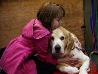 Sorry, your dog doesn't want to be hugged