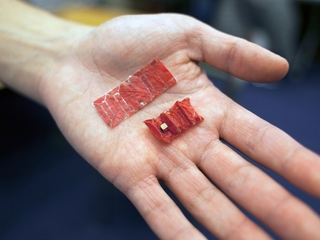 Origami robot can help avoid invasive surgeries