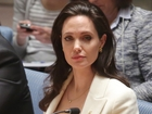 Angelina Jolie will be a visiting professor