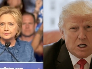 Google users search for non-Trump/Clinton choice