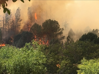 Northern California wildfires force evacuations
