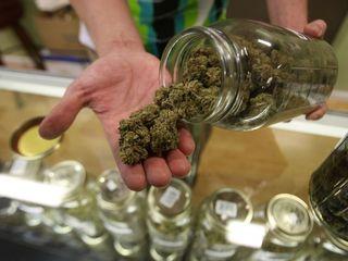 Canada might legalize recreational marijuana