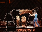 Ringling Bros. circus to perform final show
