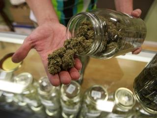 Nearly a dozen pot shops served search warrants