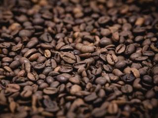 How climate change could hurt your coffee habit