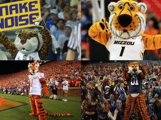 Schools with tiger mascots help wild tigers