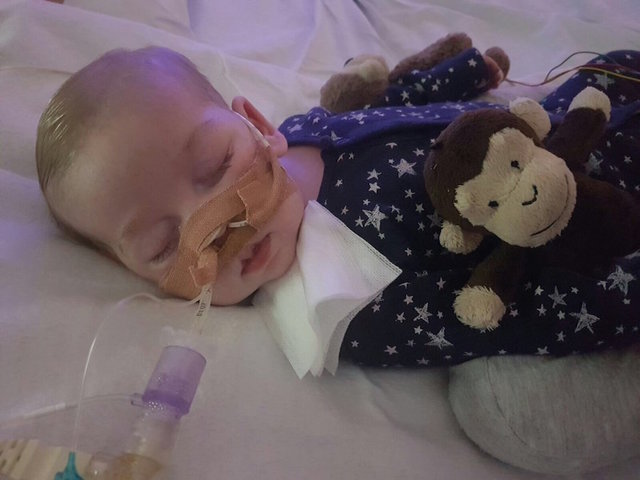 Charlie Gard's parents 'extremely upset' by public backlash