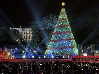 Christmas Tree Lighting ceremony on Saturday