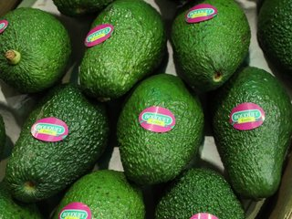 Avocado seed husks might have medical uses