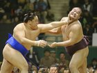 Japan Sumo Association may review ban on women