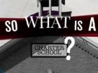 What is acharter school?
