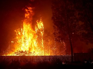 Camp Fire death toll grows to 71